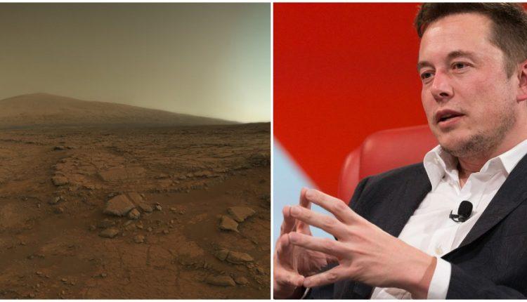 मंगल पर जाने की तैयारी कर रहे है एलोन मस्क !