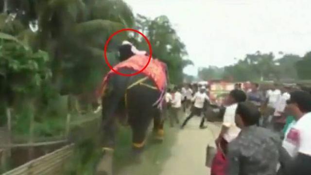 असम विधानसभा के नए डिप्टी स्पीकर हाथी पर से गिरे।